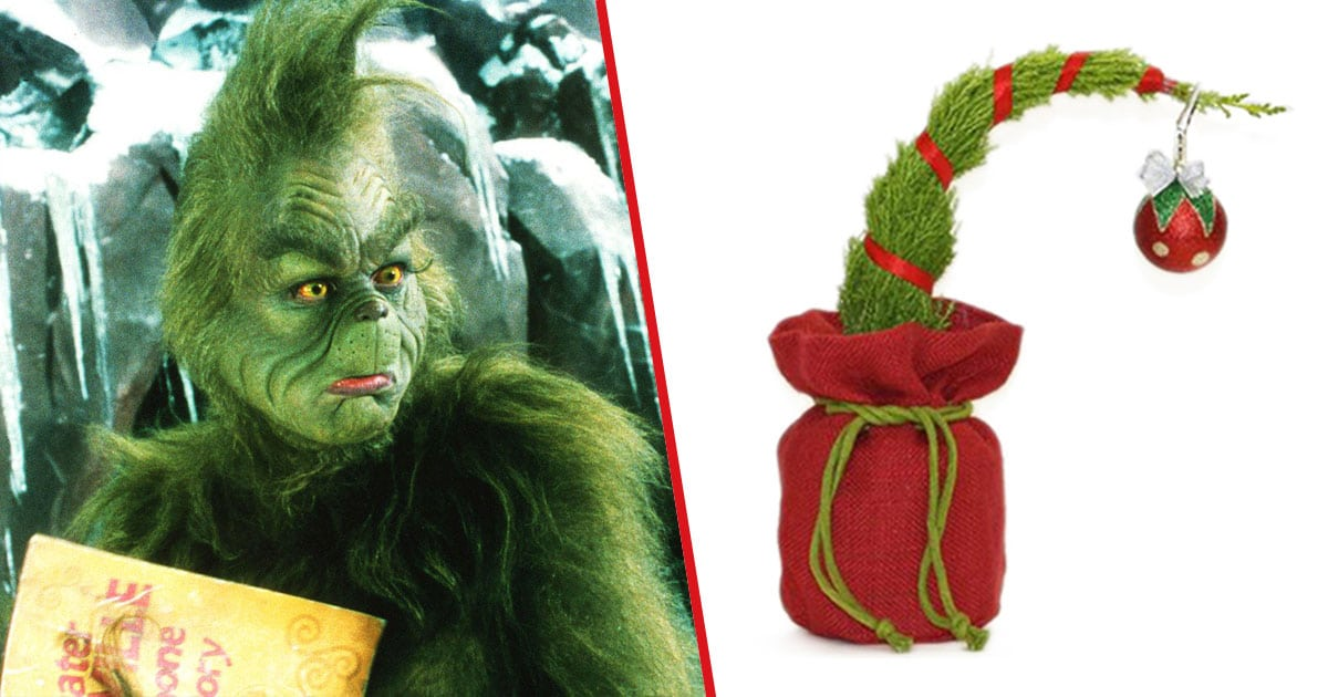 Trader Joe S Has Tiny Grinch Inspired Christmas Trees That Can Grow To 30 Feet Tall Nestia