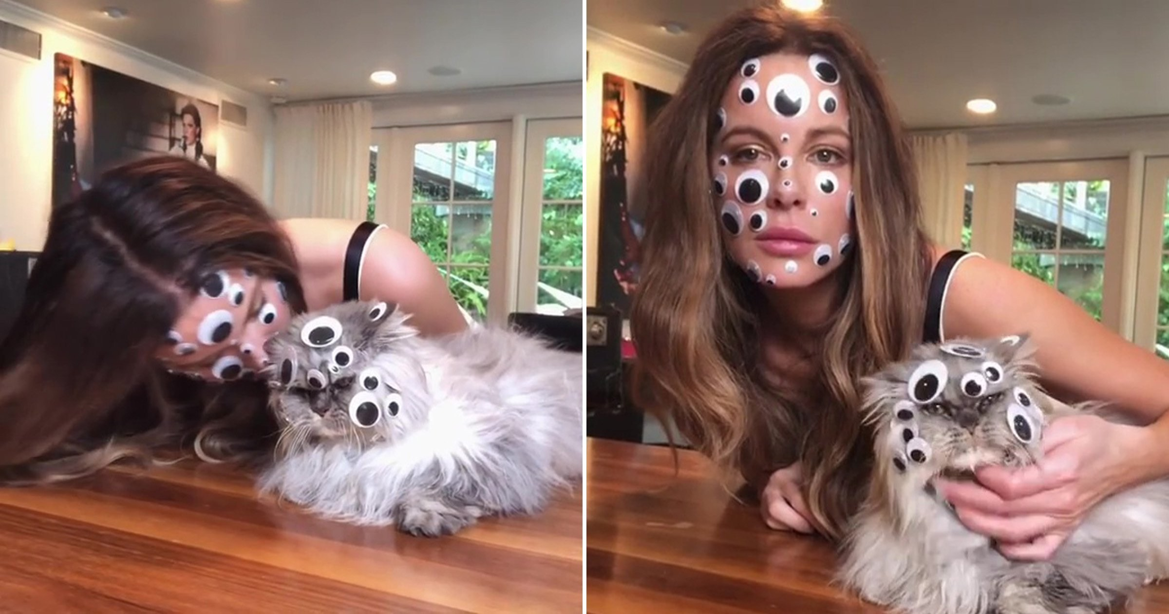 Nestia Kate Beckinsale And Her Cat Covered In Googly Eyes Is A