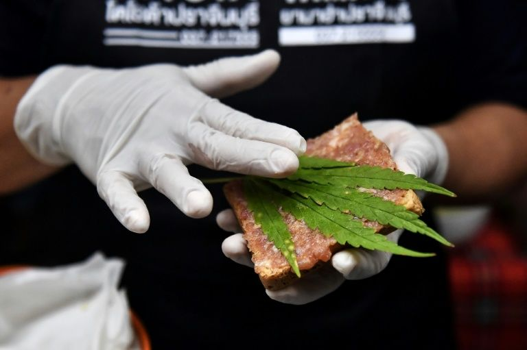 haute cuisine: thai hospital rolls out cannabis-laced menu | nestia  nestia